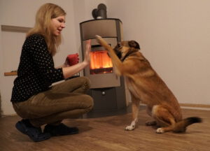 Hundetraining Kalli
